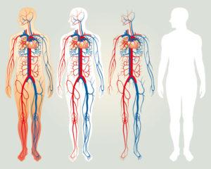 eco-color-doppler-angiologia-cassia-la-storta